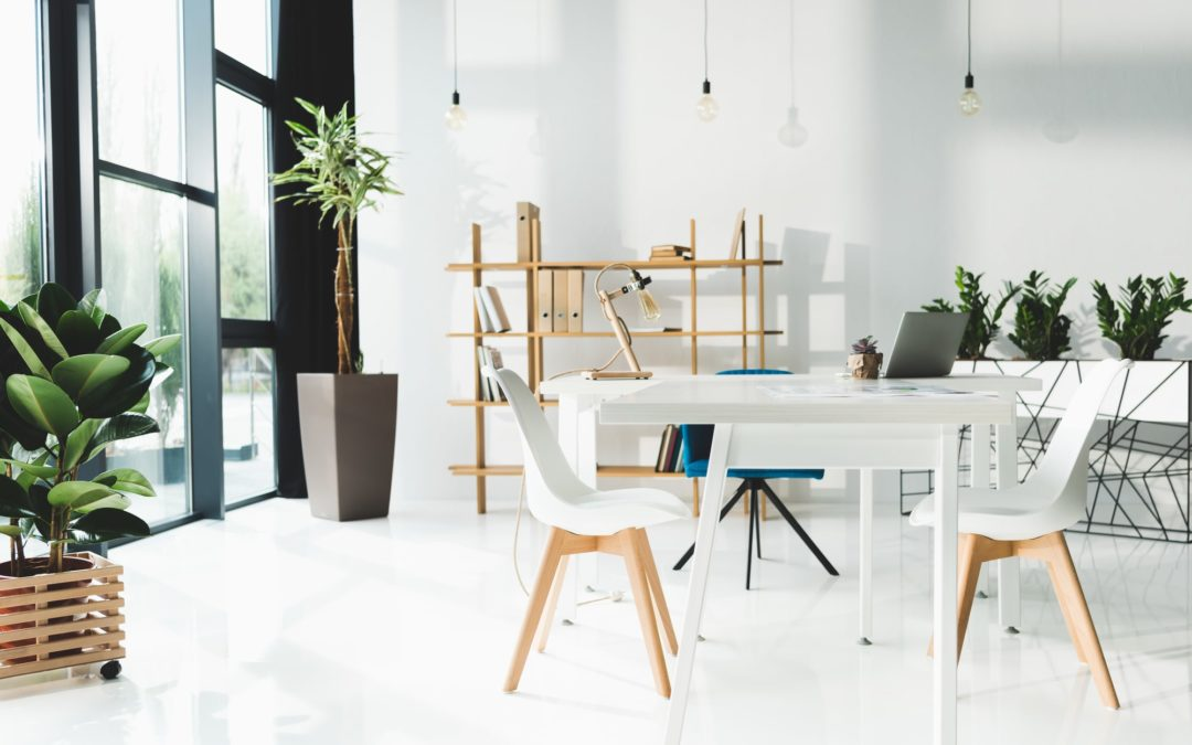 a-clean-workspace-with-white-walls-and-floors-thin-wooden-shelves-potted-indoor-plants-hanging-bulbs-and-white-chairs-around-a-white-table
